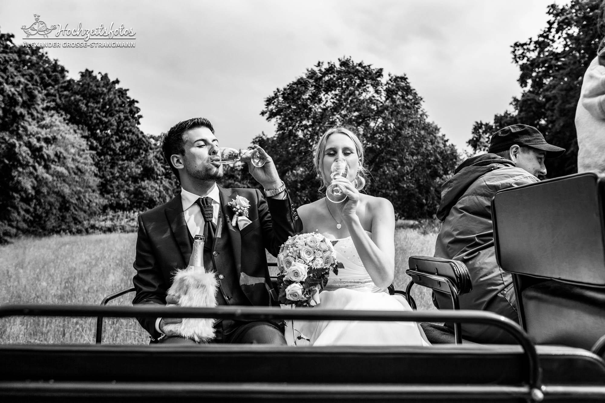 Hochzeitsreportage Hannover Hochzeitsfotograf Herrenhaueser Gaerten Grosser Garten 59