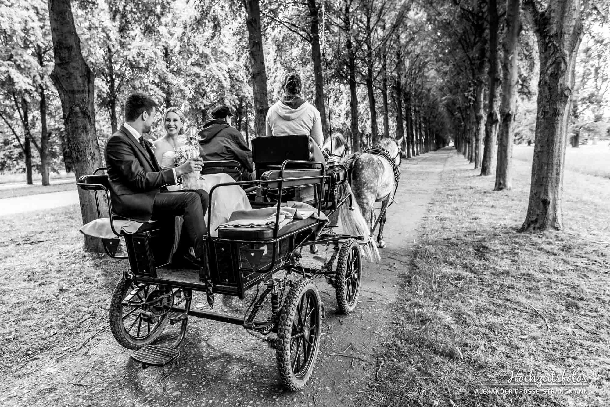 Hochzeitsreportage Hannover Hochzeitsfotograf Herrenhaueser Gaerten Grosser Garten 62